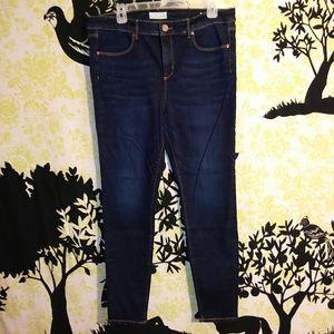 Women's 14 High Waisted LOFT Skinny Jeans